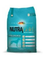 Nutra Gold Salmon and Potato Adult Dog 15kg plus DOPRAVA ZDARMA!